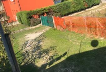 Il giardino è con erba Veneto VR Gazzo veronese