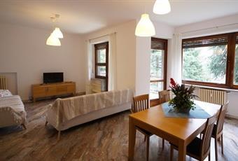 Il salone è luminoso, esposto a sud. Ha tre finestre rivolte verso ampio terrazzo e giardino.   Due grandi divani e mobiletto con ante. Tavolo in legno allungabile. Pavimento in marmo Piemonte TO Torino