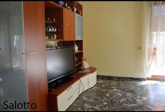 Foto SALONE 16 Veneto VI Torri di Quartesolo