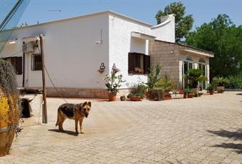 Foto GIARDINO 8 Puglia BR San Vito dei Normanni