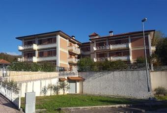 Foto ALTRO 5 Campania AV Candida