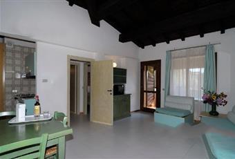 Il pavimento è piastrellato, il salone è con travi a vista, il salone è luminoso Sardegna OT Olbia