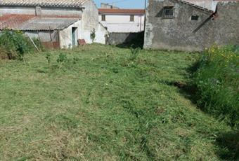 Il giardino è con erba Sardegna CA Siurgus Donigala