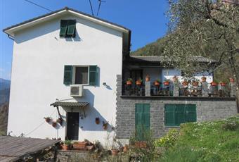 Foto ALTRO 5 Liguria GE Avegno