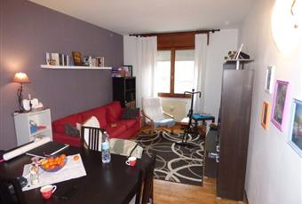 Il pavimento è di parquet, il salone è luminoso, il salone è con soffitto a volta Veneto PD Correzzola