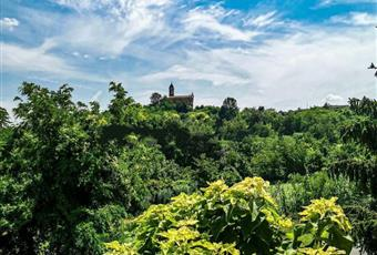 Foto ALTRO 10 Piemonte AL Camino