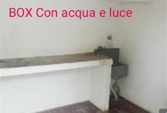 Foto ALTRO 6 Puglia BA Triggiano