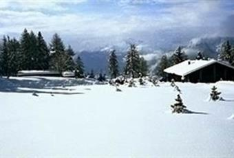 Foto GIARDINO 2 Valle d'Aosta AO Brusson