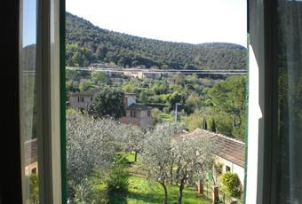 Foto GIARDINO 6 Toscana SI Sovicille