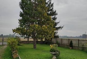 Foto ALTRO 2 Piemonte AL Casal Cermelli