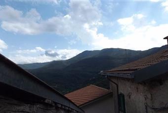 Foto ALTRO 5 Lazio RM Rocca di Papa