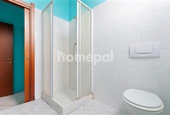 Bagno piastrellato con doccia e finestra. Lombardia PV Vigevano