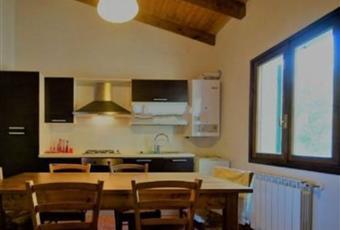 Il pavimento è di parquet, la cucina è con travi a vista, la cucina è luminosa Liguria SP Sesta godano