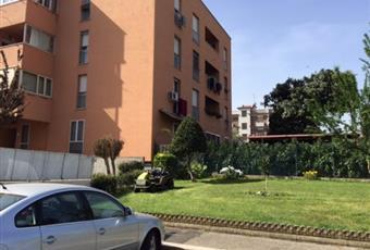 Foto GIARDINO 8 Lazio RM Roma