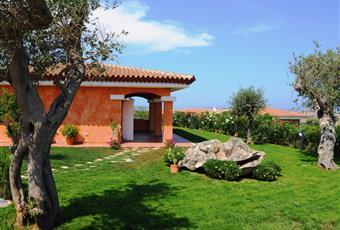 Il giardino è con erba Sardegna OT Palau