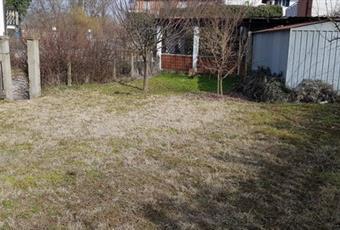 Il giardino è con erba Piemonte AL Masio