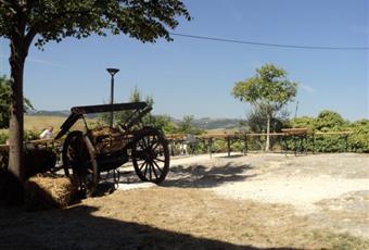 Foto GIARDINO 3 Emilia-Romagna RN Gemmano