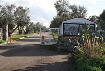 Foto ALTRO 17 Puglia LE Melendugno