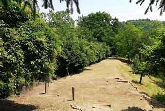Boschi e terreni seminativi per complessivi 28000 mq. Piemonte AT Rocca D'arazzo
