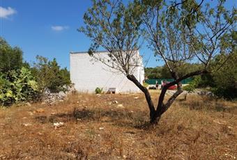 Foto ALTRO 5 Puglia BR Ostuni