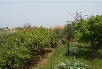 Il giardino è con pergola, il pavimento è piastrellato, il salone è luminoso Sicilia ME Condrò