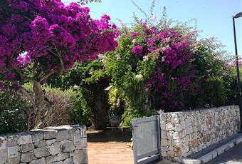 I giardini sono due esterno ed interno piantumati e con ricca vegetazione . Puglia BR Ostuni