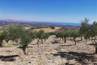 Foto ALTRO 5 Sicilia AG Caltabellotta