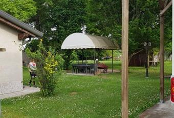 Il giardino è con erba Veneto PD Borgoricco