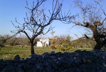 Il giardino è con erba Puglia BA Noci