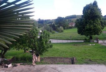 Il giardino è con erba Piemonte AT Mongardino