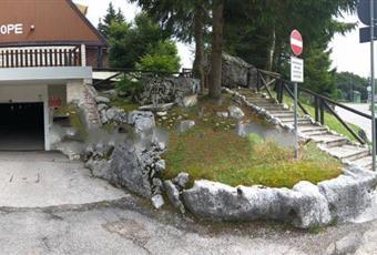 Foto ALTRO 13 Friuli-Venezia Giulia PN Aviano