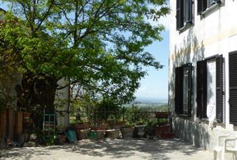 Foto GIARDINO 13 Piemonte AL Sant'Agata Fossili
