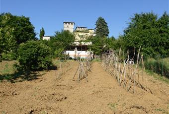 Foto ALTRO 18 Piemonte AL Sant'Agata Fossili