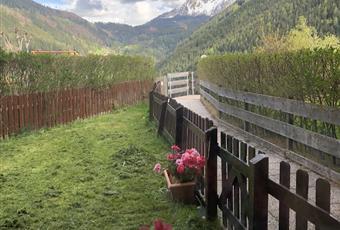 Il giardino è con erba Trentino-Alto Adige BZ Nova Levante