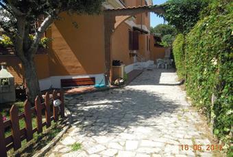 Foto ALTRO 5 Lazio RM Ladispoli