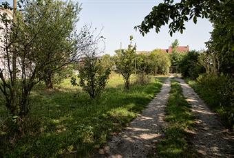Il giardino è con erba Piemonte AL Alluvioni Cambiò