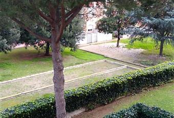 Foto ALTRO 7 Lazio RM Ladispoli