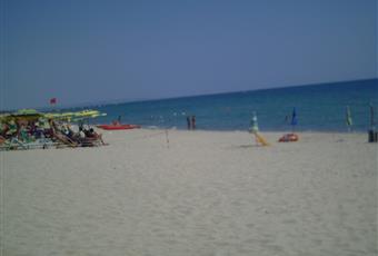 a 300 metri si raggiunge una spiaggia molto ampia, di sabbia finissima. La località ha meritato anche quest'anno la bandiera BLU. Oltre alla spiaggia libera, sono presenti nelle immediate vicinanze stabilimenti balneari ed il residence La Fenice. Calabria CZ Sellia Marina