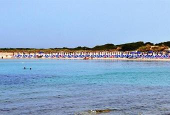 Foto ALTRO 15 Puglia BR Carovigno