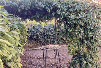 Il giardino è con erba Piemonte AL Alessandria