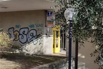 Foto ALTRO 3 Lazio RM Roma