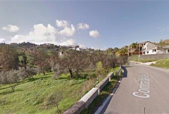 Foto ALTRO 10 Calabria RC Caulonia