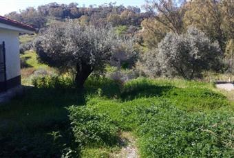 Il pavimento è piastrellato Calabria RC Caulonia