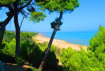 Foto ALTRO 15 Abruzzo TE Pineto