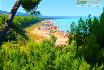 Foto ALTRO 13 Abruzzo TE Pineto