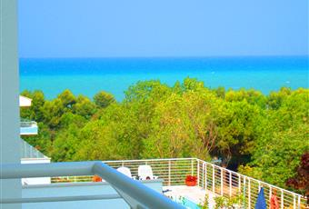 Foto ALTRO 19 Abruzzo TE Pineto