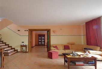 Il pavimento è piastrellato, il salone è luminoso Lazio FR Ceccano