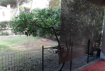 Il giardino è con erba, siepe in alloro e piante di pitosporo, oleandro e nocciolo. Ampio patio con camino e ripostiglio, recintato per bambini o cani.  Emilia-Romagna FE Comacchio