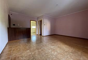 Stanza con molto luminosa con finestra e porta finestra di accesso al balcone Puglia BR Brindisi