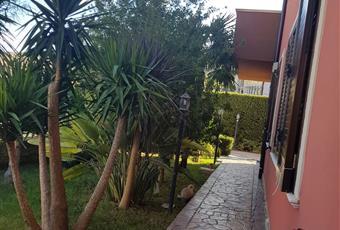 Il giardino è con erba Sicilia AG Comitini
